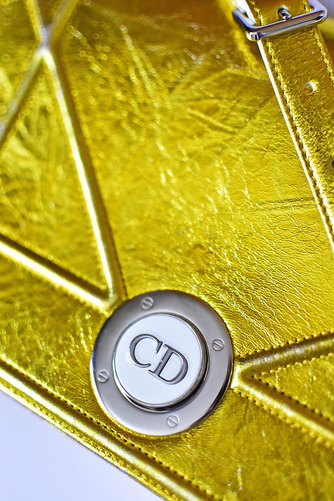Dior | Akanksha Redhu | cd clasp closeup long