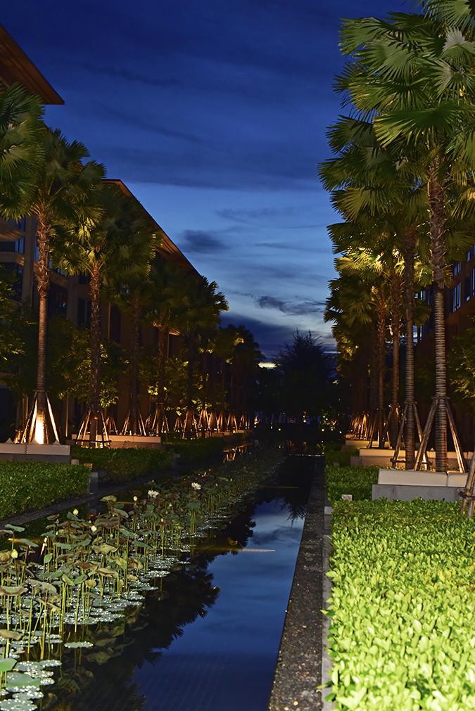 Baan Mai Khao | Phuket | Akanksha Redhu | night flash trees
