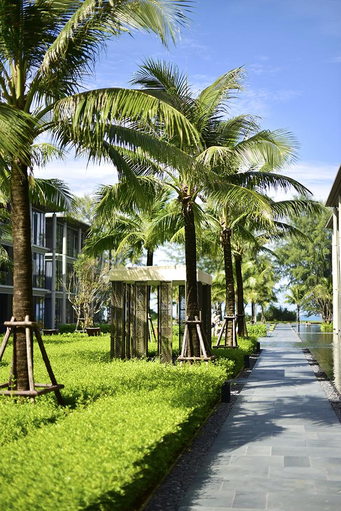 Baan Mai Khao | Phuket | Akanksha Redhu | trees passage property
