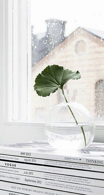 Home Inspo | Akanksha Redhu | leaf in water