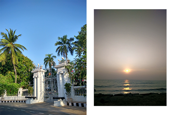 Pondicherry | Akanksha Redhu | sunrise palm trees combo