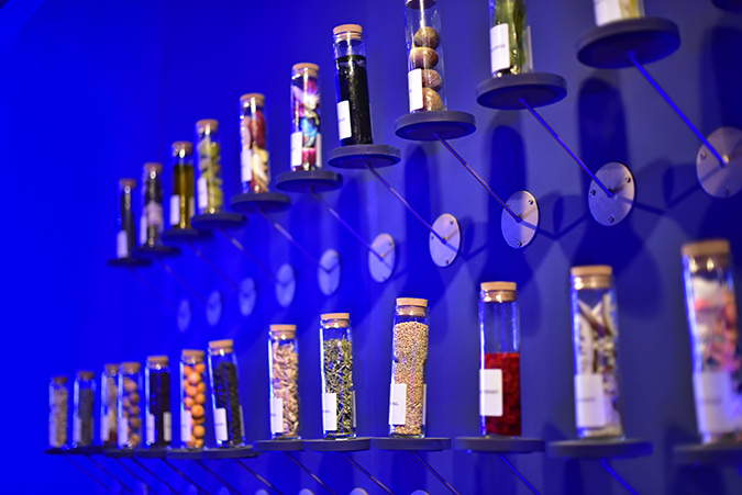 Chivas 18 Alchemy | Akanksha Redhu | perfumes wide