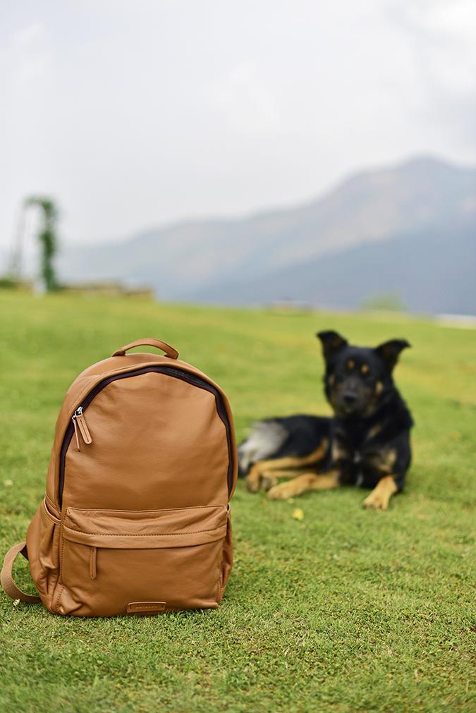 Outback | Akanksha Redhu | doggo