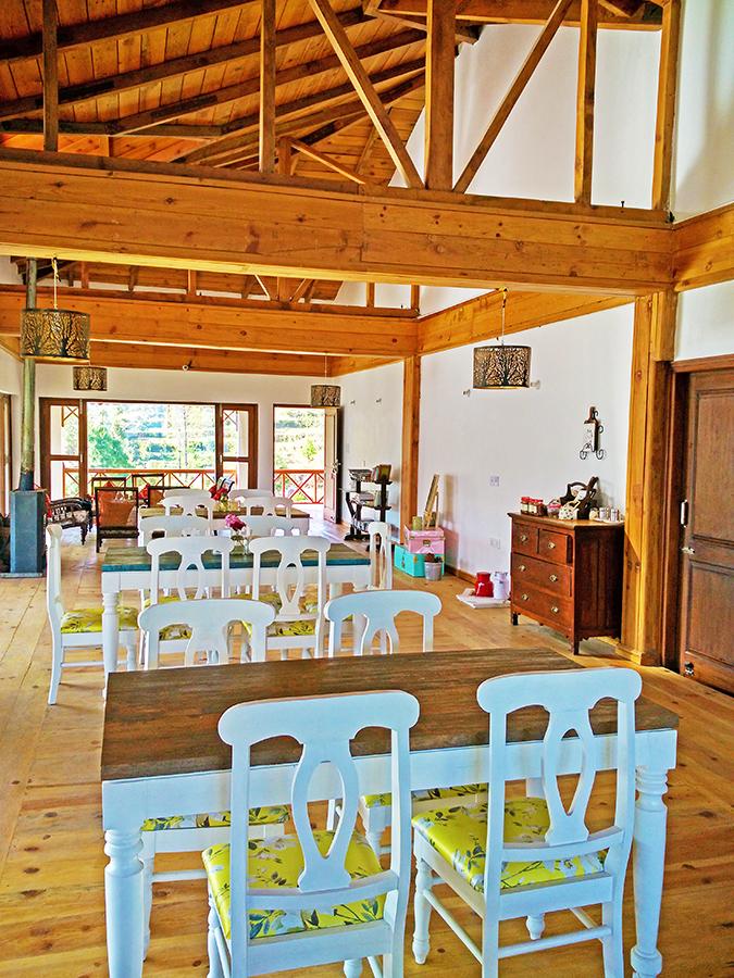 DYO The Organic Village Resort   Akanksha Redhu   full cafe phone