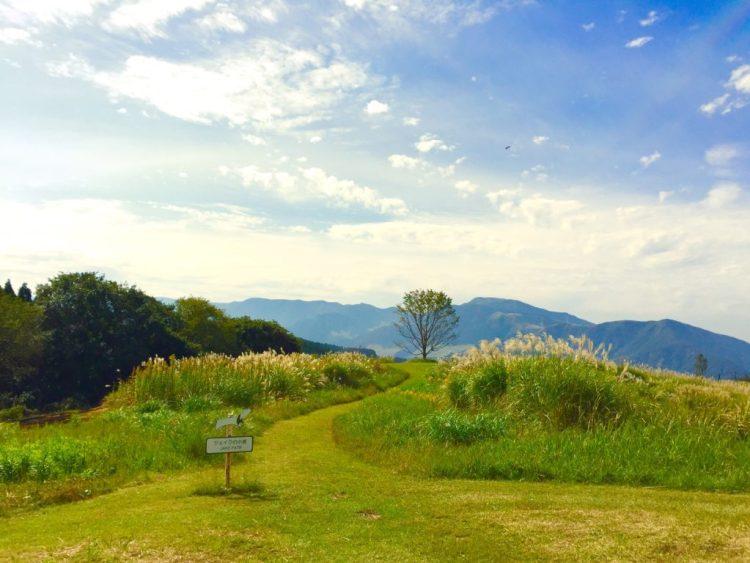 絵本庭園4