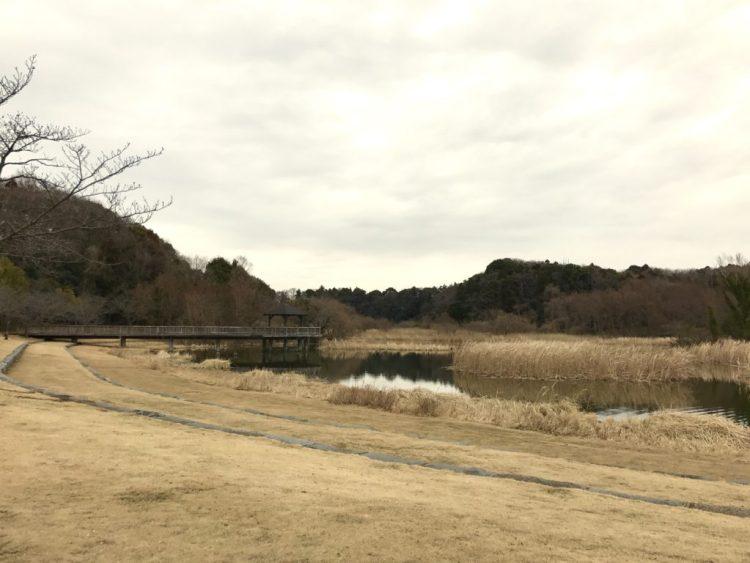 とにかく広い池。