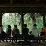 雨が好き!森林のプロが教える「雨の森の楽しみ方」マニュアル!