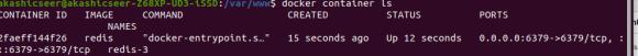 output of docker run