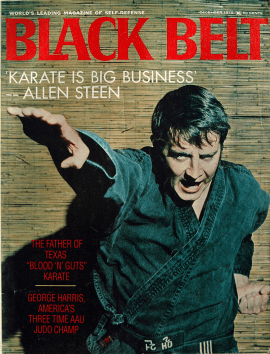 steen.BB.cover