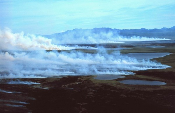 White smoke rising from the tundra in front of the Baird Mountains.