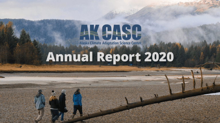 Annual Report – 2020 Year in Review