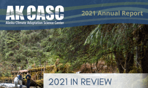 Annual Report – 2021 Year in Review