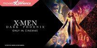 Tak Sabar Tunggu Film X-Men? Simak 7 Fakta Film X-Men: Dark Phoenix
