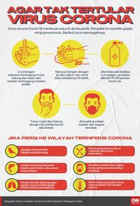 Gambar Corona Anak Tk : gambar, corona, INFOGRAFIS:, Tertular, Virus, Corona