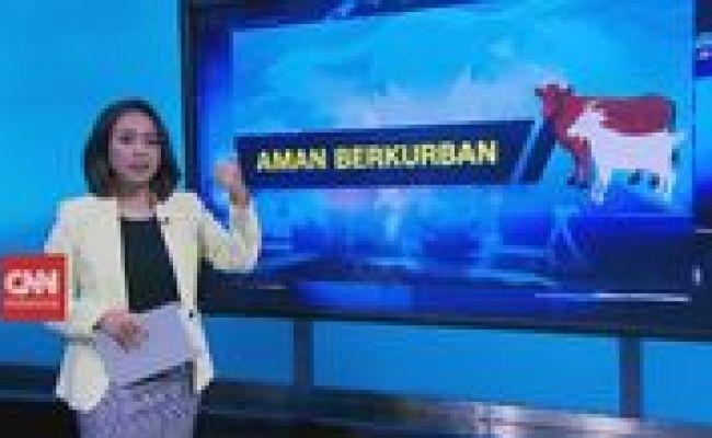 Video Tips Aman Berkurban Di Hari Raya Iduladha 2020
