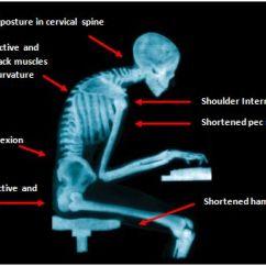 Office Chair Upper Back Pain Walgreens Ultra Lightweight Transport Burgundy Desk Jockey | Ak Fitness Vancouver
