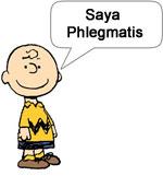 charlie phlegmatis dan asal muasal personality plus