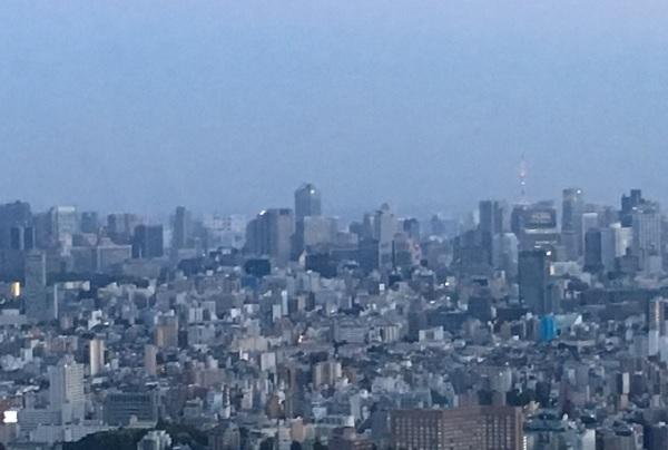 スカイサーカスからの東京タワー