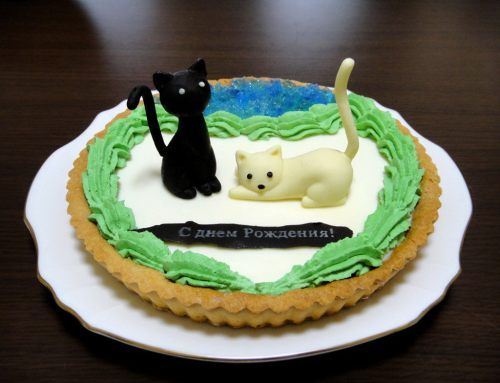 fans-celebrate-sanya-birthday-08