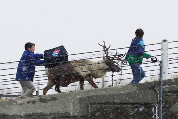 dominos-pizza-japan-take-reindeer-delivery-pizza-04