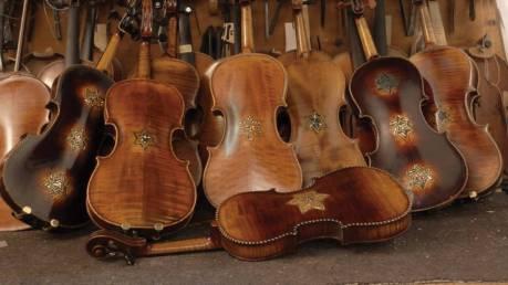 Violins_pix1