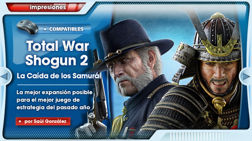 [AKB] Total War Shogun 2