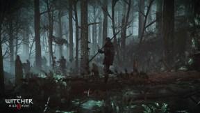 The Witcher 3 Wild Hunt