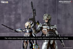 raiden_W_caption_gecco_02