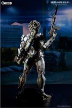raiden_W_caption_gecco_03