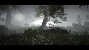 Shadow of the Colossus PS4 5