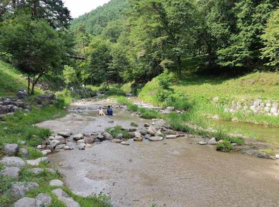Nosoko River (野底川,Nagano Prefecture) August 2018