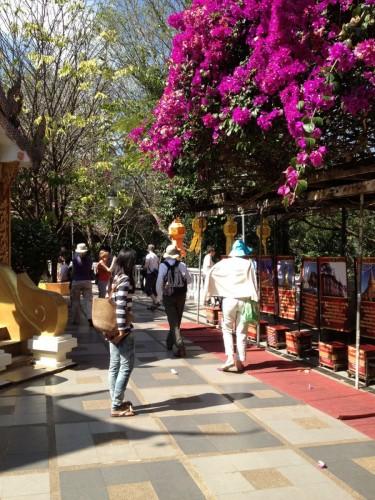 ChiangMaiZoo2011-22