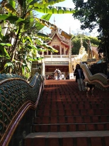 ChiangMaiZoo2011-5
