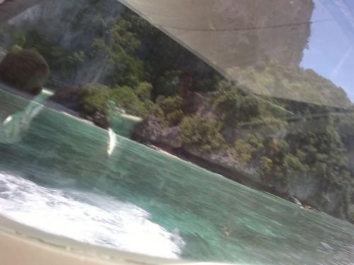 Phi Phi Islands2011-86