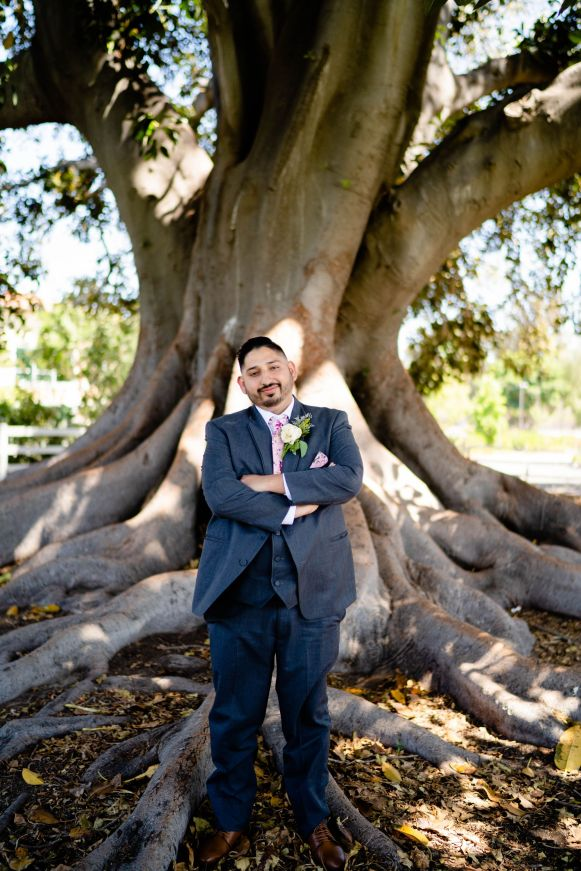 camarillo ranch wedding tree
