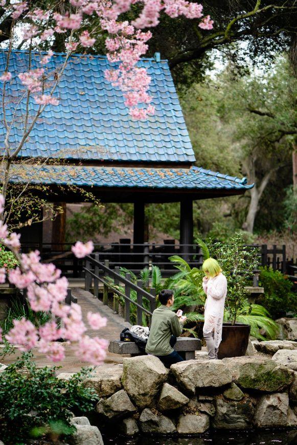 descanso garden proposal