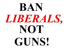 Image result for ban liberals not guns