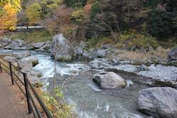 東京奥多摩の紅葉