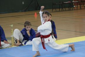 Ages 8 to 12 karate martial arts Dragon program in Bressi Ranch Carlsbad