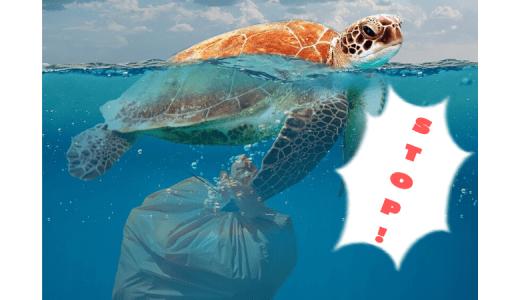 海を守りたい!世界のプラスチックゴミ問題の現状と対策を考えよう!