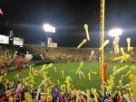 初めての甲子園プロ野球観戦記!伝統の阪神巨人戦:写真付