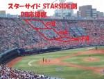 横浜スタジアム内野3塁側DB応援席の景色眺めは?!ベイファンは?写真付観戦記