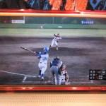 女子プロ野球:ネットライブ中継を無料で観る方法!
