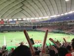 都市対抗野球,横浜市代表を応援しに東京ドームへ行ってきた!雰囲気,様子は!?【写真観戦記】