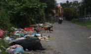 Silang Sengkarut Mengatasi Sampah di Pekanbaru