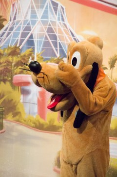 Pluto at the Epcot Character Spot