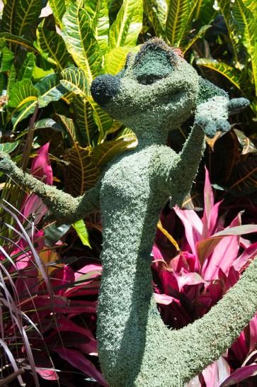 Timon topiary
