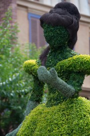 Belle topiary