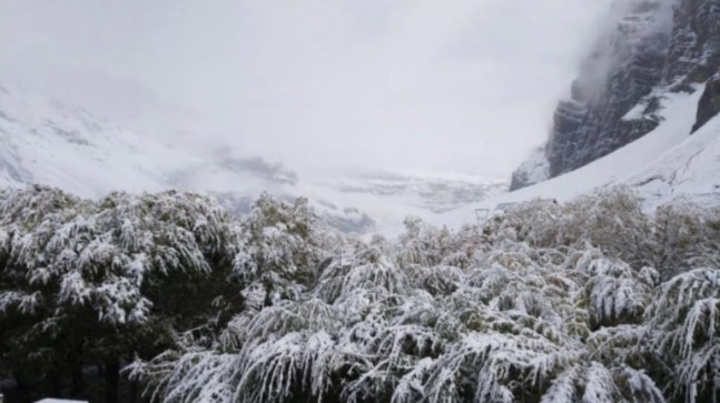 Himachal Pradesh to witness early snowfall as temperatures decline due to less vehicular traffic in hilly areas: Weather scientists