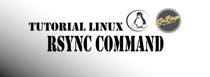 rsync command